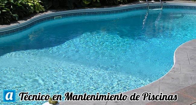 Curso a distancia t cnico mantenimiento de piscinas for Curso mantenimiento piscinas