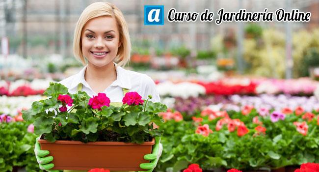 Curso de jardiner a online aprendemus cursos online Jardineria online