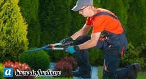 curso-de-jardinero
