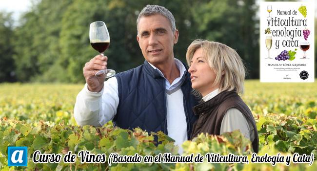 Curso de Vinos (con tapa de la obra: Viticultura, Enología y Cata)